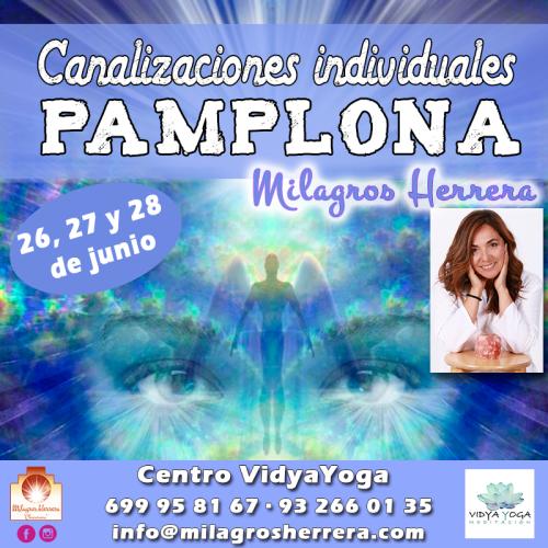 canalización Pamplona